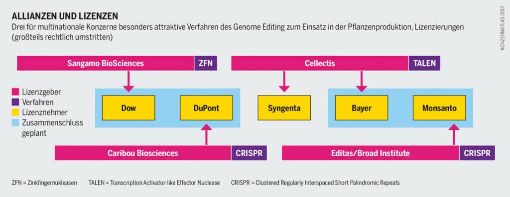 Patente und Gentechnik